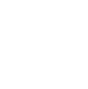 The Vegan World